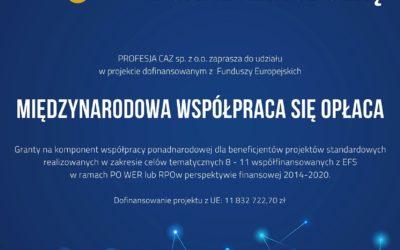 10 mln zł na współpracę ponadnarodową w puli projektu grantowego!